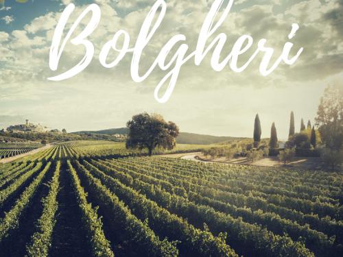 Bolgheri – D.O.C.