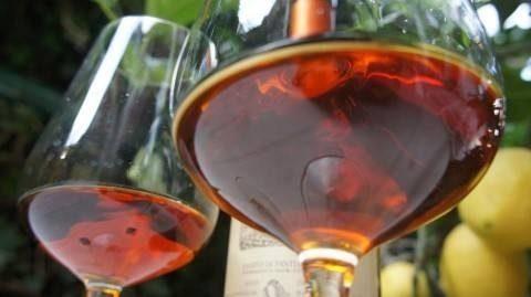 Vin Santo di Montepulciano – D.O.C.