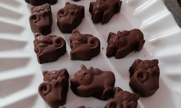 Cioccogattini Praline Fondenti