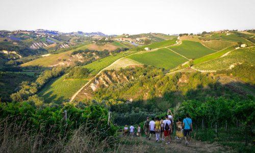 Mangialonga Picena…un'avventura che appaga tutti i sensi