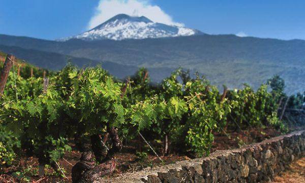 L'Etna nel Calice a Siciliainbocca – A Tavola con il Sommelier