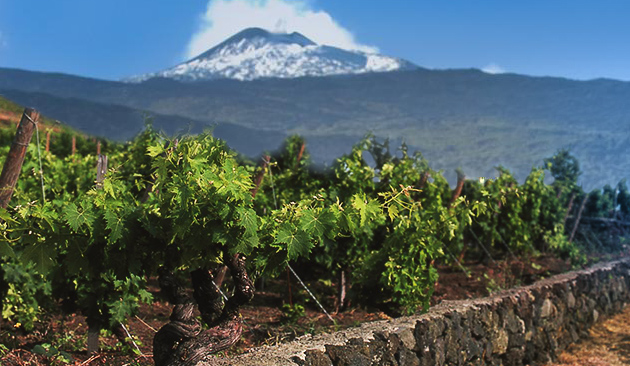 cover_viticoltura_etna-eolie