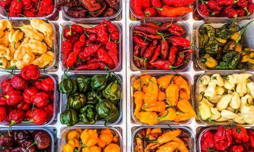 Pikkanapa: il piccante festival nazionale del peperoncino e della canapa