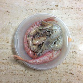 pesci per fumetto