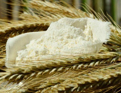 La Farina: come sceglierla in base a Tipo e Forza