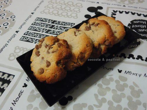 biscotti con gocce di cioccolato SENZA GLUTINE & LATTOSIO
