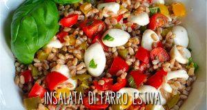 farro, peperoni, mozzarella, orecchiette di mozzarella, pomodori, basilico, cooking giulia