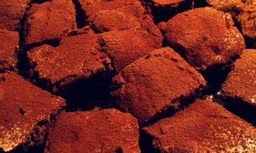 Brownies ai mirtilli rossi
