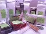 Tea&Coffee House-Prodotti naturali e biologici-CorinaGS