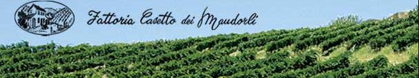 Fattoria Casetto dei Mandorli-Vini di qualita-CorinaGS