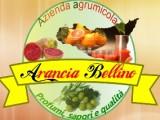 Azienda Agrumicola Arancia Bellino|CorinaGS