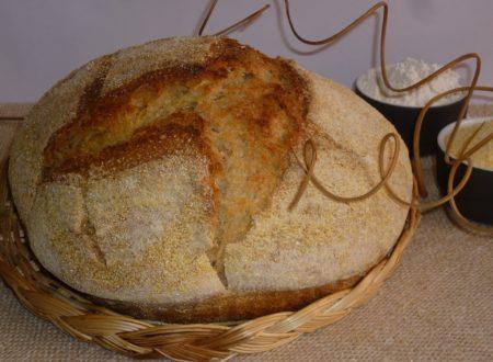 pane giallo di mais e farro
