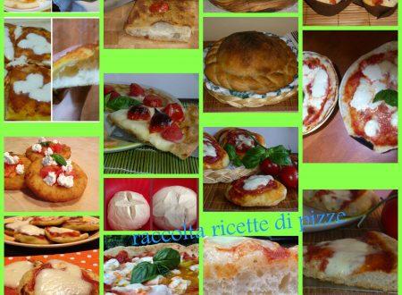 raccolta di ricette di pizze
