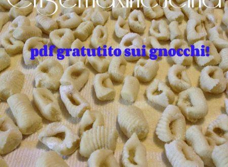 Speciale gnocchi, ricettario in pdf