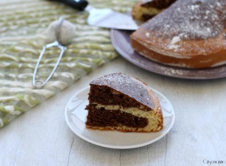 Torta light variegata al cacao, ricetta facile e veloce
