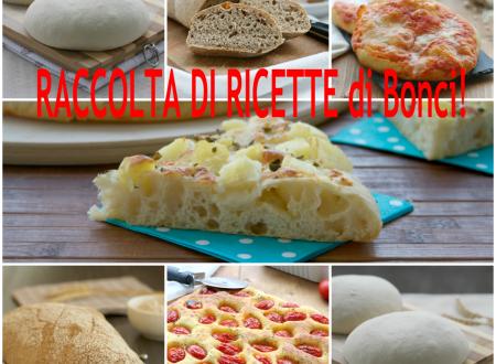 Ricette di Bonci, raccolta di ricette di pizze e pane