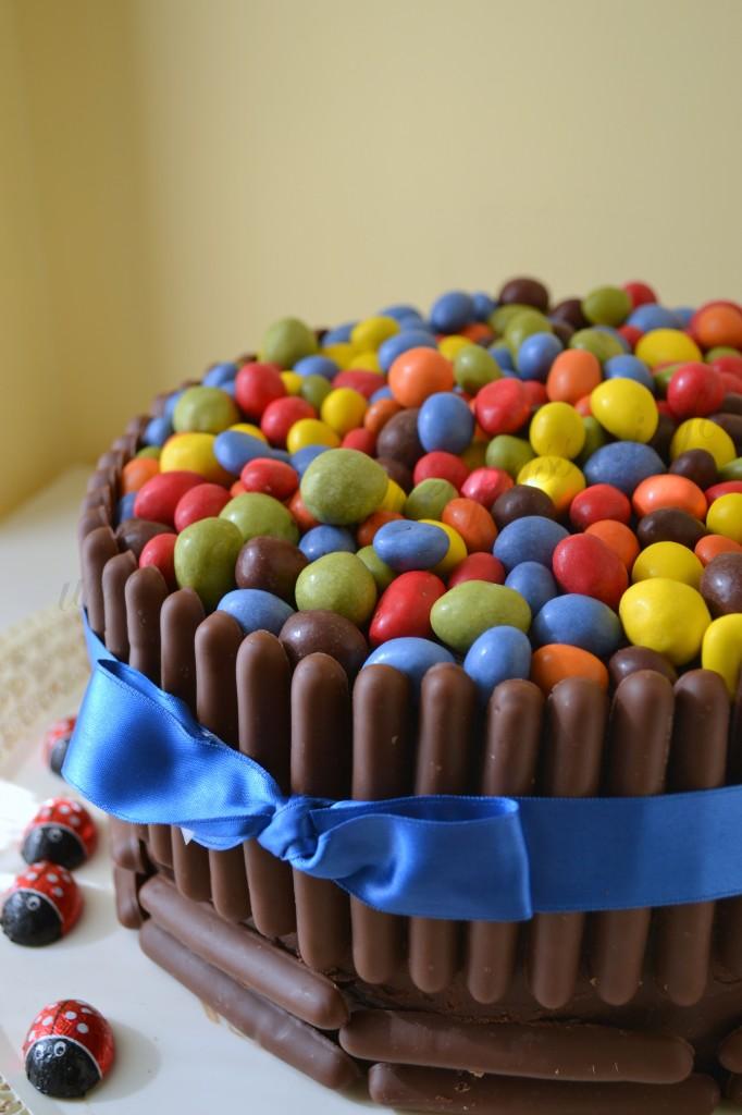 ricetta torta con smarties e togo (17)