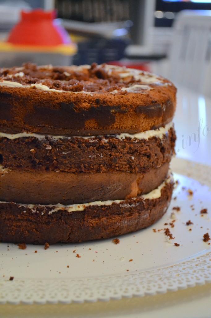 ricetta torta con smarties e togo (7)