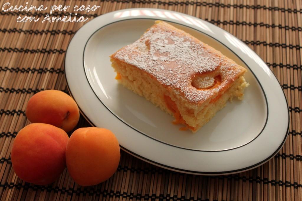 Torta di albicocche allo yogurt, ricetta | Cucina per caso con Amelia