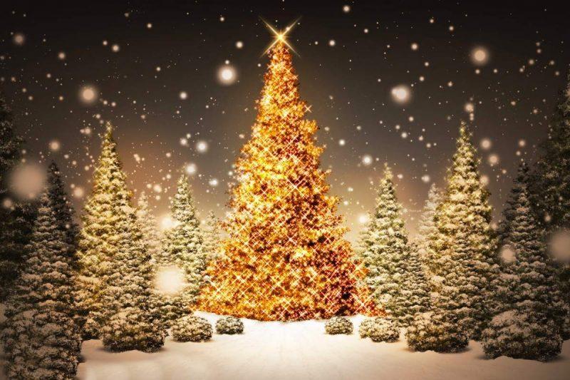 Ricette per le feste natalizie