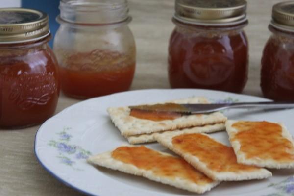 Marmellata di pesche/cucinapercasocon Amelia