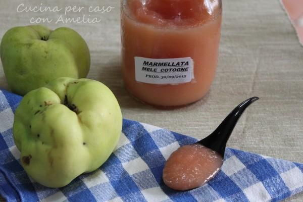 Marmellata di mele cotogne bimby | Cucina per caso con A