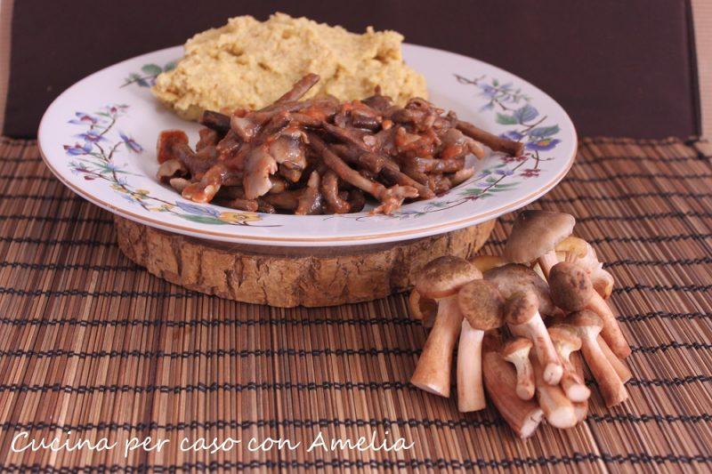 Funghi chiodini in umido, ricetta