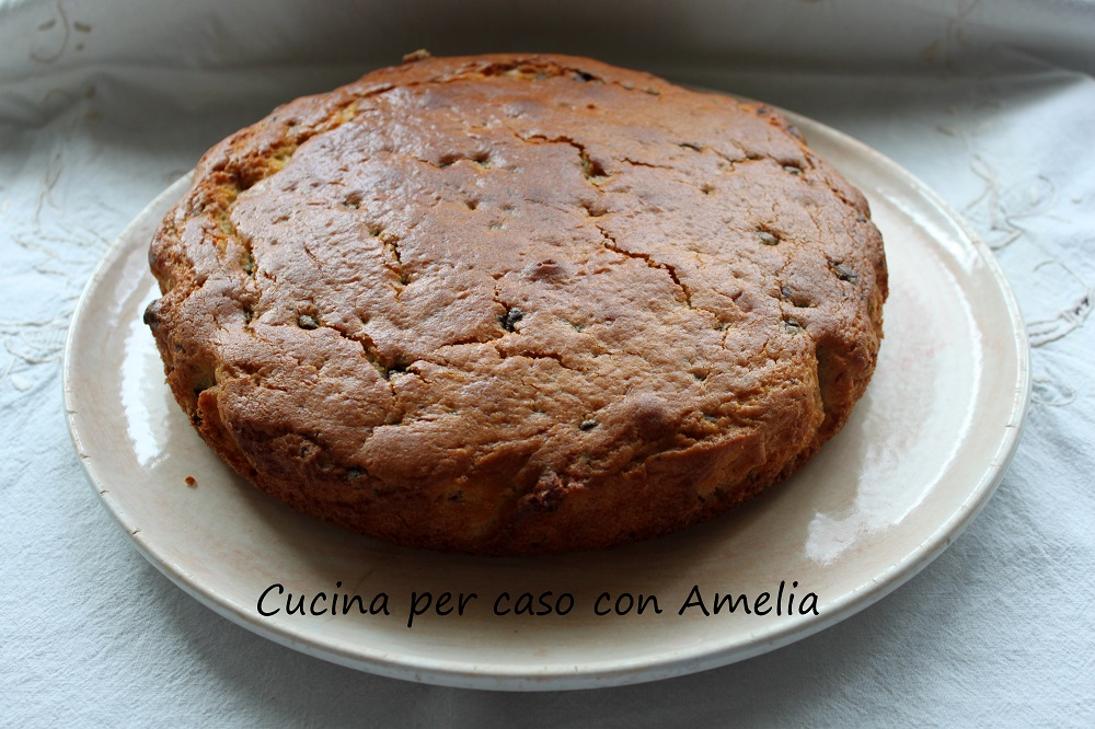 Torta soffice ricotta e cioccolato, ricetta - Cucina per caso con Amelia