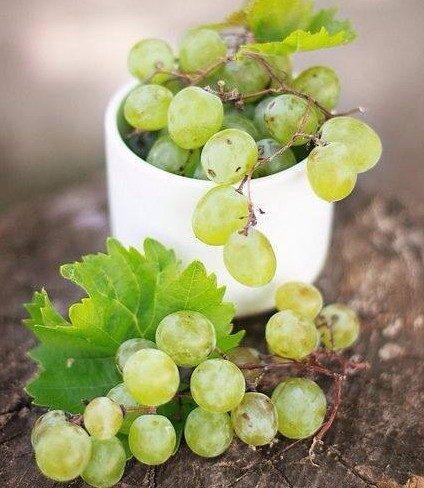 Uva, i grappoli della salute