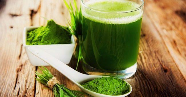 L' alga spirulina, concentrato di vitalità e benessere