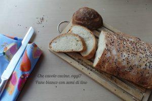 Pane bianco con semi di lino