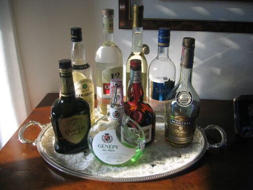 Liquori fatti in casa Maraschino Fragolino Mirtilli