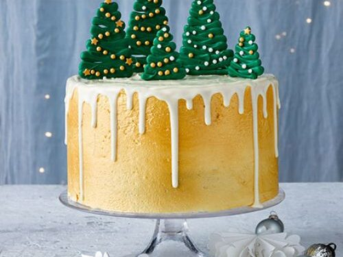 Winter spice cake with chocolate trees