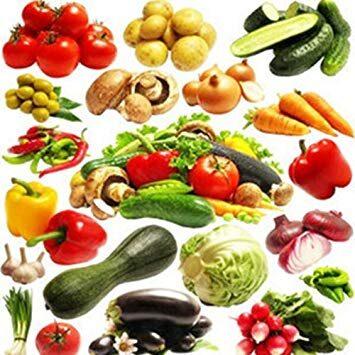 Cucina vegetariana Gustoso polpettone alle verdure