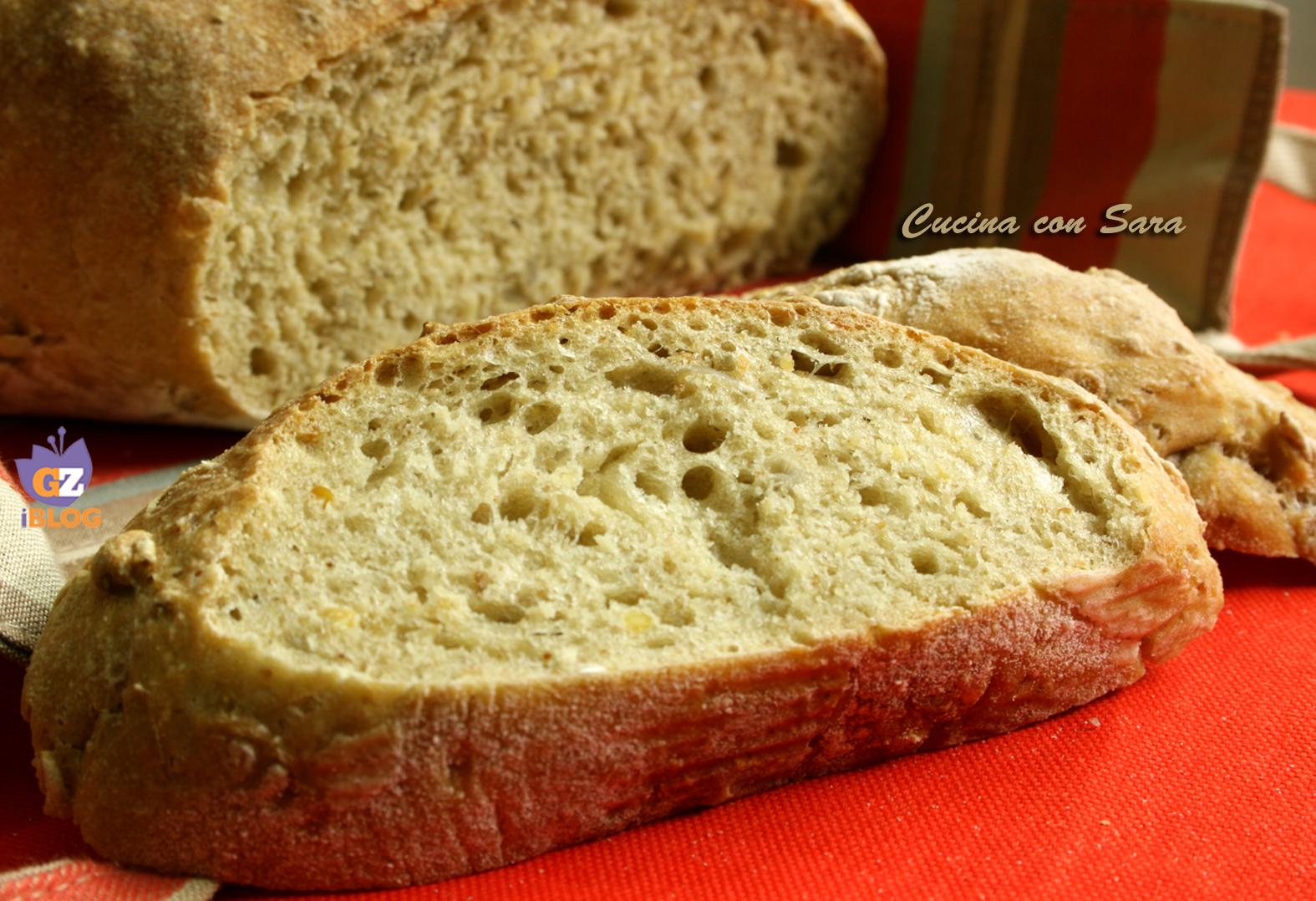Pane ai 5 cereali