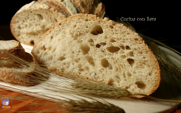 Pagnotta di grano tenero