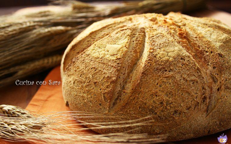 Pane di mais di Novara – pane di meliga
