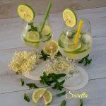 Cocktail Hugo o Spritz Hugo