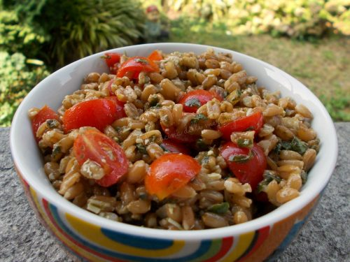 Insalata di farro, pesto e pomodorini, ricetta primo piatto vegetariano