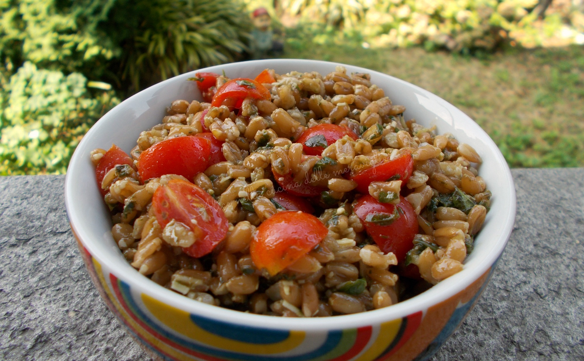 Insalata di farro, pesto e pomodorini Ricetta primo piatto vegetariano Alice nella cucina delle meraviglie