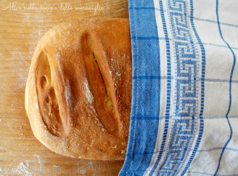Pane al miele Ricetta lievitato Alice nella cucina delle meraviglie