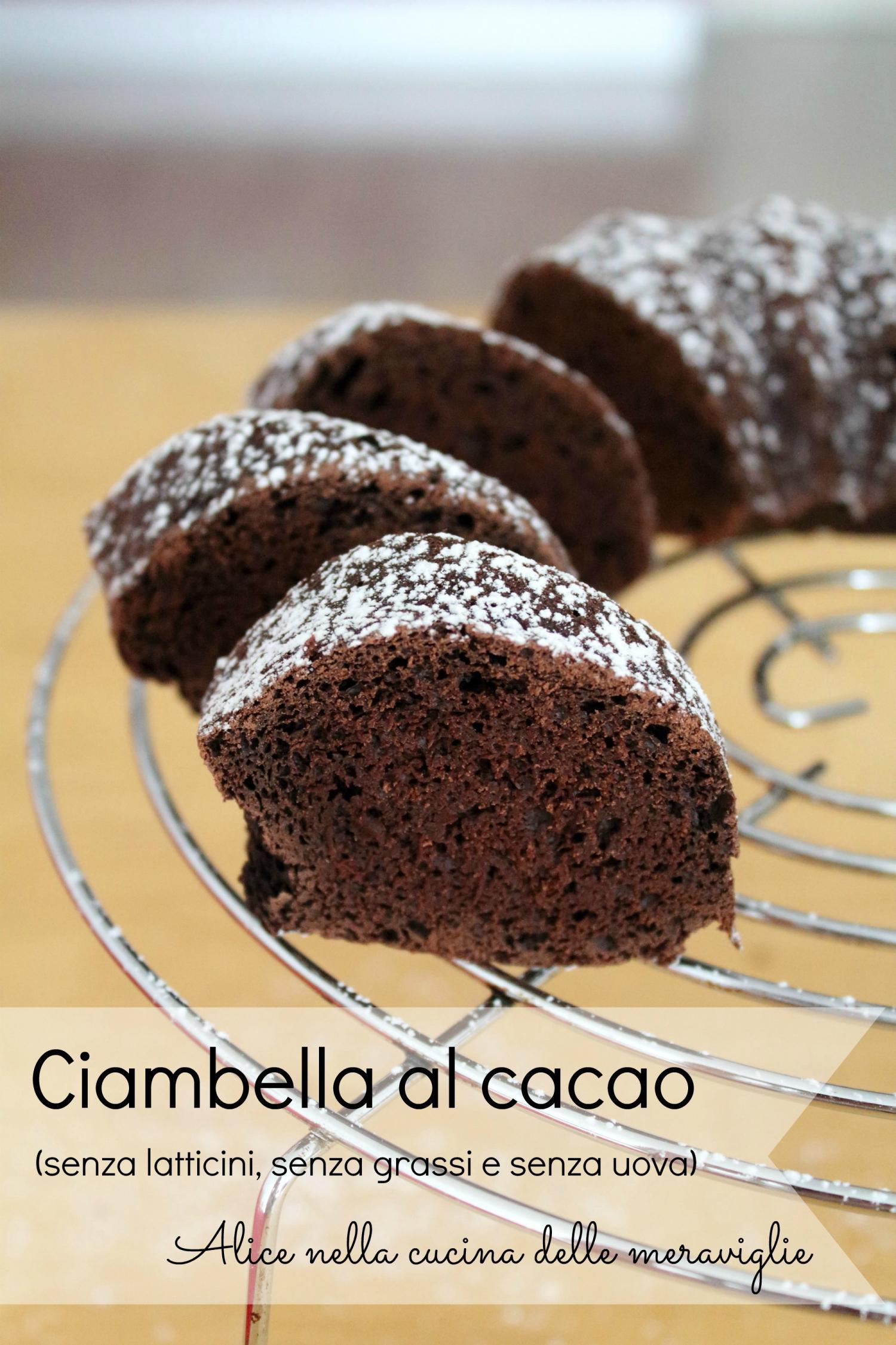 Ciambella al cacao Ricetta dolce vegano senza latticini senza grassi e senza uova Alice nella cucina delle meraviglie