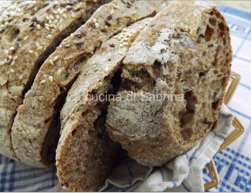 Pane integrale ai semi vari con li.co.li.