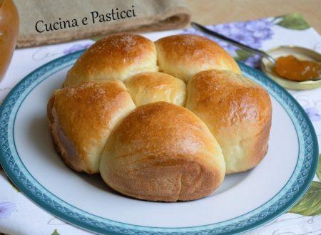 Rosetta di pan brioche e marmellata