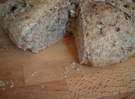 Pane integrale con semini