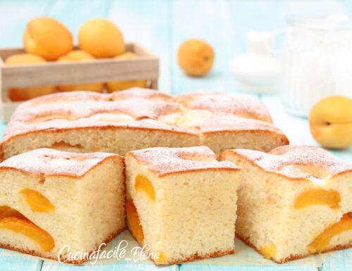 Torta albicocche e yogurt