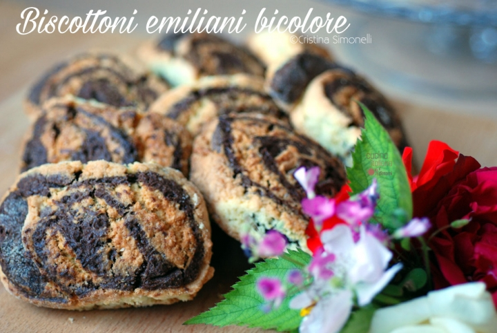 Biscottoni-emiliani-bicolo2