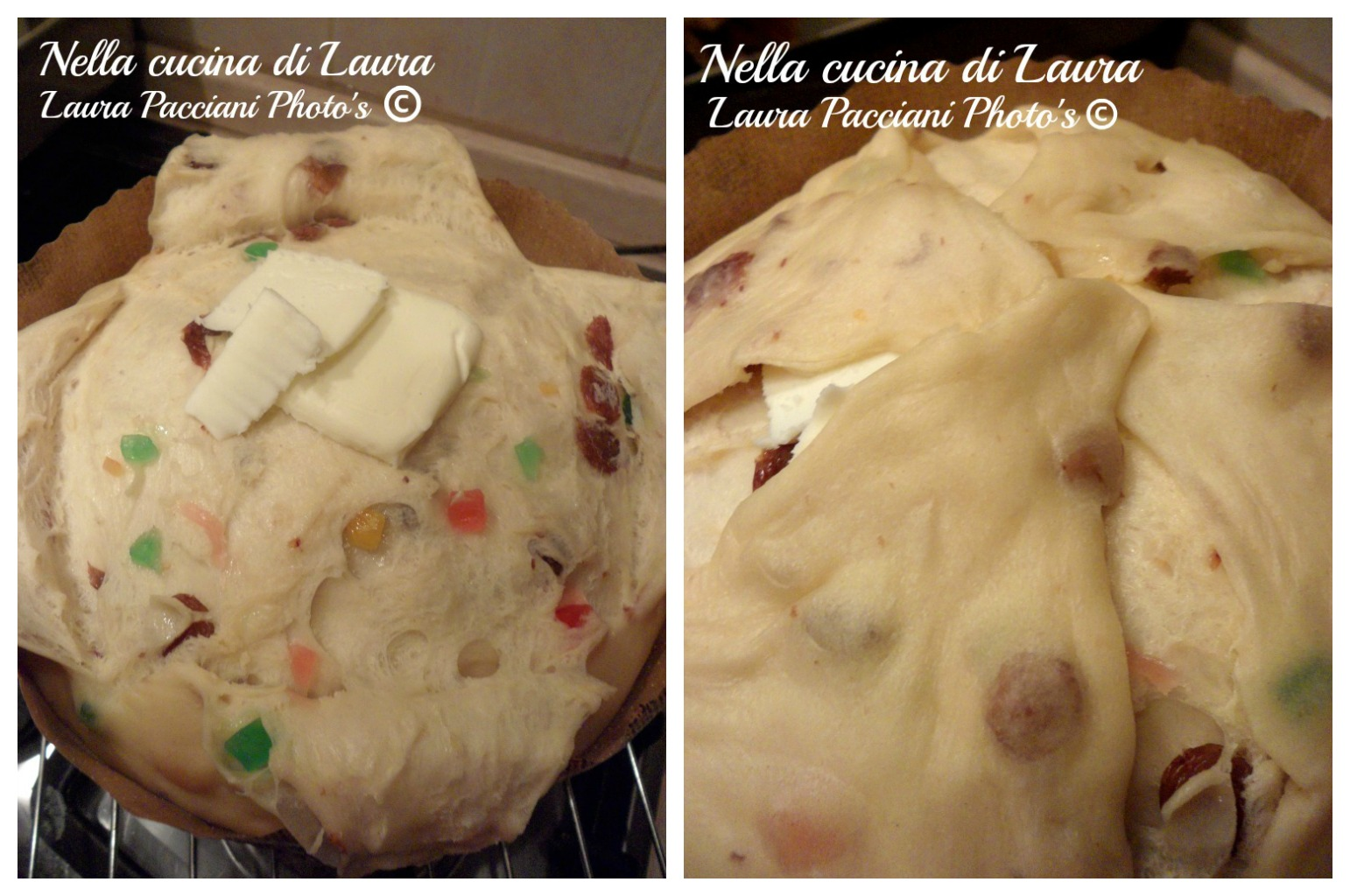 panettone_cucinalaura