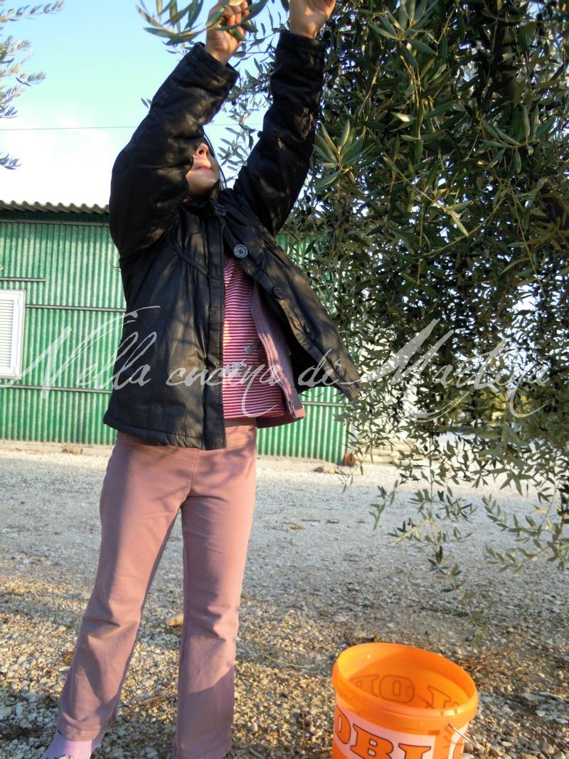 camilla e le olive