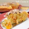 torta di albicocche ricetta